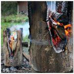 Деревянные табуреты, созданные в огне