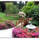 Гармония и стиль китайского сада!