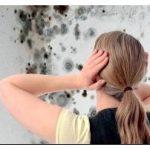 Грибок в ванной комнате – причины появления и способы удаления
