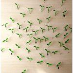 Зеленые побеги: причудливые колпачки для гвоздей