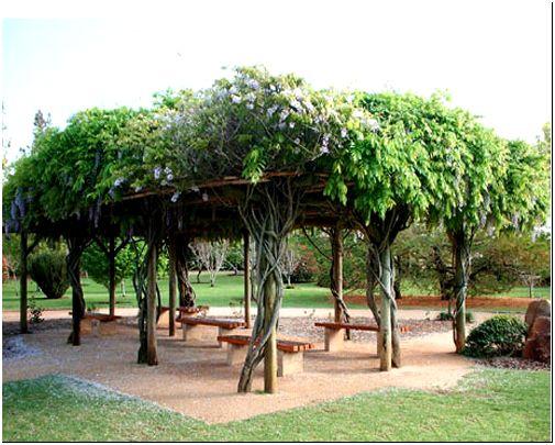 Фото 11 - Открытая беседка с односкатной зеленой крышей