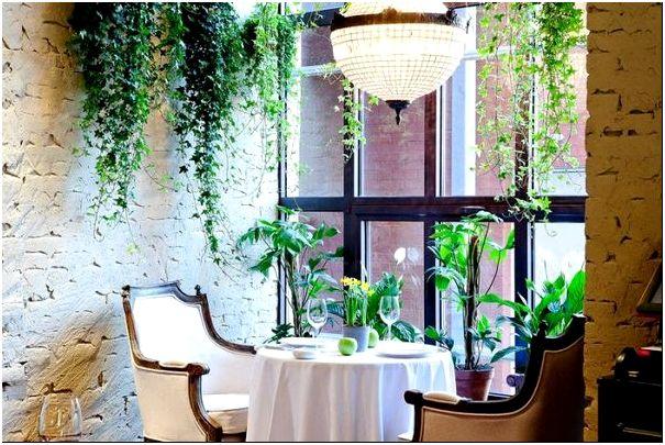 Фото 2 - Располагать растения можно не только на горизонтальных поверхностях, но и подвешивая к потолку. С точки зрения эргономики, такой вариант рациональнее.