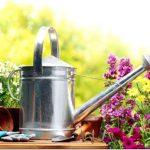 Лунный календарь садовода-огородника на июнь 2017 года