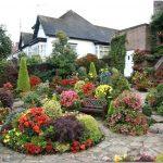 Растения для ландшафтного дизайна: как интересно оформить сад?
