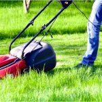 Можно ли косить высокую траву газонокосилкой