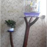 Элементы эко-стиля в вашем доме