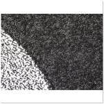 Какой моющий пылесос лучше для ковролина?